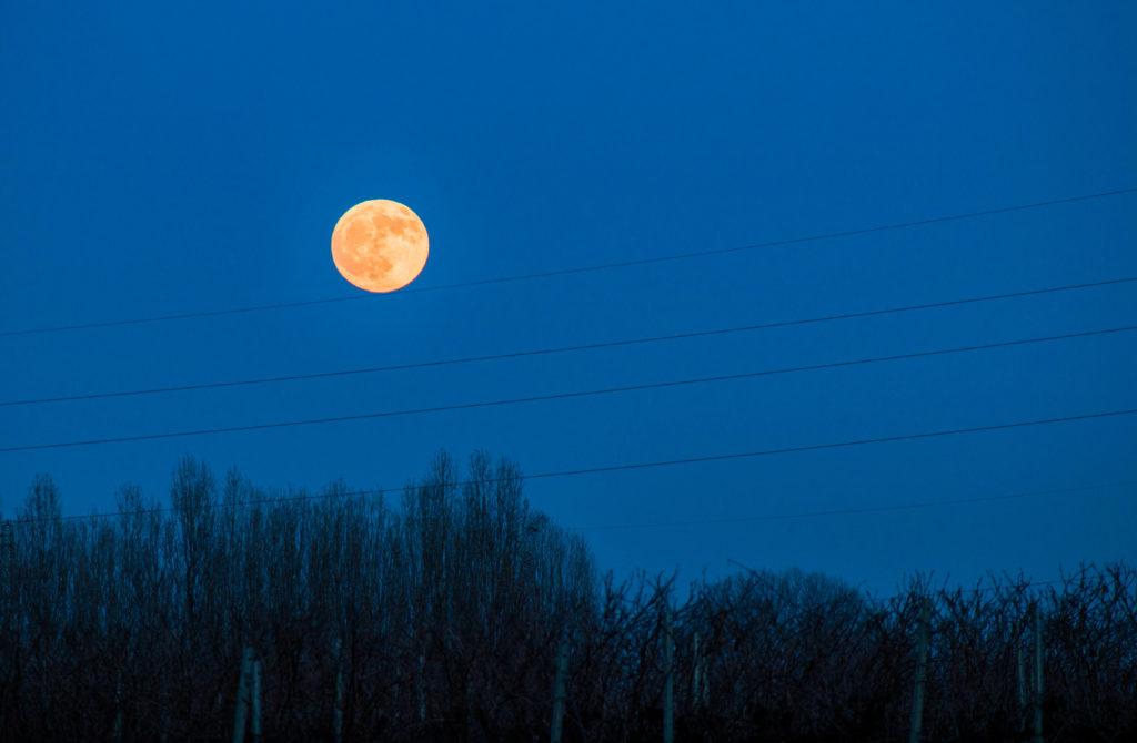 La luna sul filo